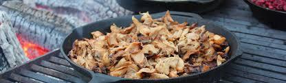 outdoor cuisine outdoor cooking in ontario parks