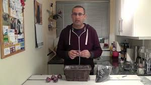 gardening video how to plant hyacinth bulbs youtube