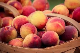 fresh fruit bouquet wichita ks you places aka your own near wichita