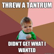 Tantrum Meme - threw a tantrum didn t get what i wanted failure kid quickmeme