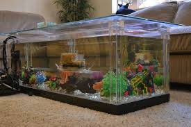 Fish Tank Living Room Table - transform the way your home looks using a fish tank decor around