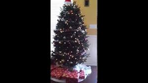 water a real christmas tree youtube