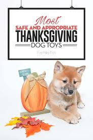 thanksgiving toys 31 coolest and safest thanksgiving dog toys for 2017 holidays