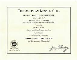 Comfort Dogs Certification Therapy Pet Certification Justsingit Com