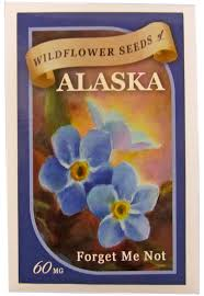forget me not seed packets forget me not seed packet 59 0052 2 95 once in a blue moose