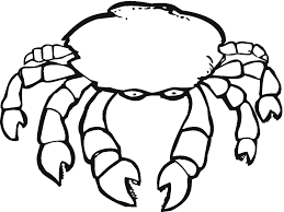 free printable crab coloring pages for kids inside hermit crab
