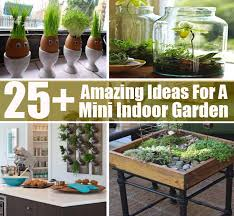 Indoor Gardening Ideas 25 Amazing Ideas For A Mini Indoor Garden Diycozyworld Home