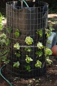 How To Build Vertical Garden - to build a vertical lettuce planter