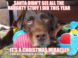 Christmas Miracle Meme - it s a christmas miracle imgflip