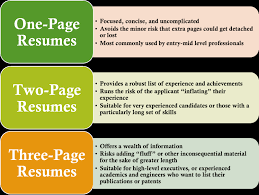 Apple Pages Resume Templates Free Resume Template 1 Page Examples Of Resumes Enhancv For One 81