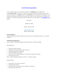 personal background sample resume cv profile examples finance manager resume example terrific example of personal profile on resume