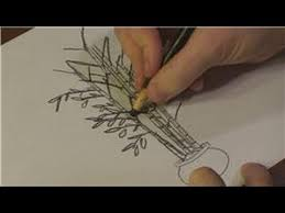 nature drawings how to draw bamboo trees youtube