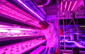 target is launching in store vertical farms for fresh ultra local