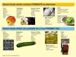 top diet foods stomach diet food