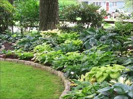 outdoor ideas hermitage retaining dermot raised hosta garden