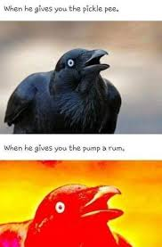 Crow Meme - crows only want pump a rum or pickle pee 146884217 added by