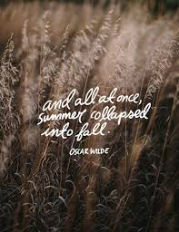 the 25 best summer captions ideas on summer instagram