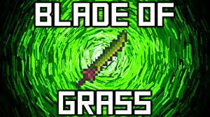 Terraria Vanity Clothes Terraria Blade Of Grass Sword Google Search Games Pinterest