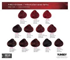 mahogany hair color chart images about hair color on pinterest ion brilliance pravana