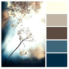 2017 color combinations blue and brown color scheme jameso