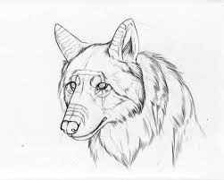 easy cute wolf drawing