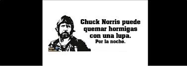 Memes De Chuck Norris - chuck norris cumple 76 años y te dejamos sus mejores frases en