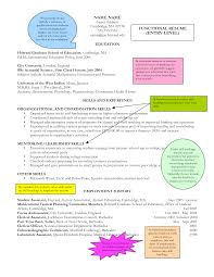 Sample Resume For Google by Sample Resume For Entry Level Jobs Free Resume Example And