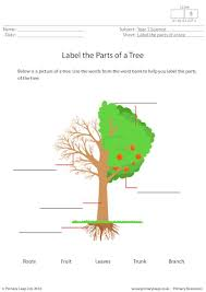 Resources Free Printable Worksheets Primaryleap Co Uk Label The Parts Of A Tree Worksheet Science