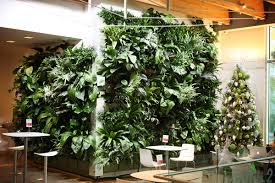 Indoor Garden Wall by Novelty 24 Pockets Vertical Garden Font B Planter B Font Font B