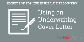 how to write a life insurance cover letter like a million dollar agent