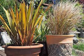 what is the best material for plant containers and planters gp