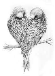 gallery birds sketch easy drawings art gallery