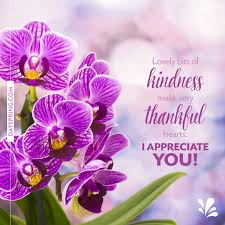 thank you e card thank you cards gifts dayspring
