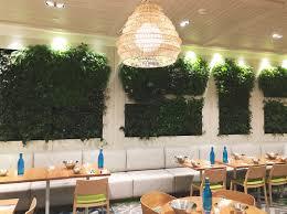 star indoor vertical gardens fytogreen australia