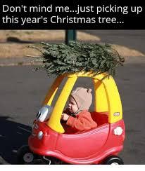 Christmas Tree Meme - 25 best memes about christmas tree christmas tree memes