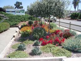 Front Yard Landscape Designs by Landscape Designer Susan Rojas From Waterwise Botanicals Designed