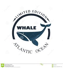 sea and nautical decoration badge vector illustration stock