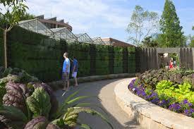 Botanical Gardens In Atlanta Ga by Atlanta Botanical Garden U0027s Edible Garden U0026 Outdoor Kitchen Connect