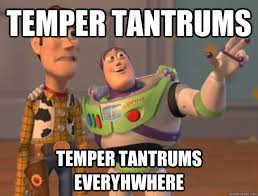 Tantrum Meme - temper tantrum meme memesuper laugh pinterest meme