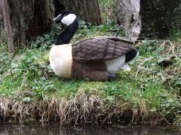 canadian goose stuffed animal u2013 17 u2033 large stuffed goose