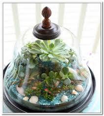 32 best terrarium container images on pinterest glass terrarium