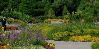 Michigan Botanical Gardens Matthaei Botanical Gardens Nichols Arboretum American