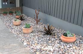 right side rock cactus garden by ima photo weather underground
