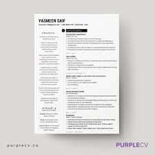 professional template for resume 2 page professional resume template simple resume templates for 2 page professional resume template
