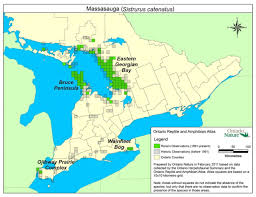 Map Of Ontario Recovery Strategy For The Massasauga Ontario Ca