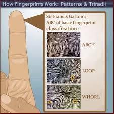 pattern classification projects fingerprint news including galton s fingerprint type