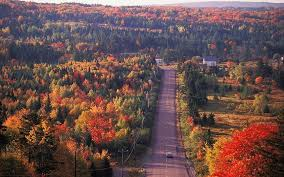canada autumn foliage telegraph