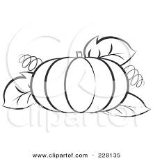 pumpkin leaf outline clipart 1977041