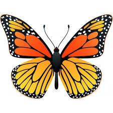 en couleurs à imprimer animaux insectes papillon numéro 286748