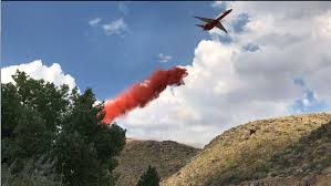 Wildfire Viewer by Mogul Fire Fully Contained At 124 Acres
